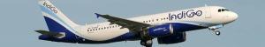 indigo aerolínea india