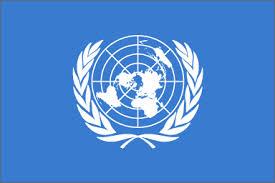 India, visita, ONU, UN, Ashe, Singh