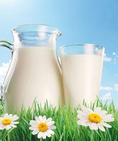 india, leche, rajastán, exportaciones
