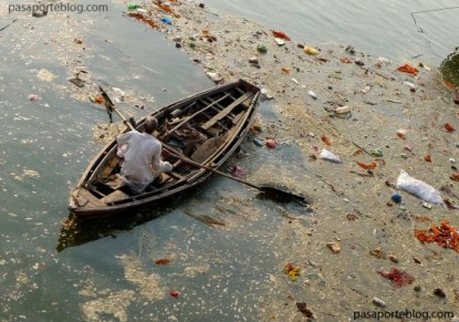 india, ganges, sagrado, religión, hindú, saneamiento, medioambiente, banco mundial