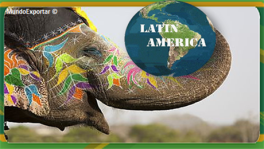 india latin america